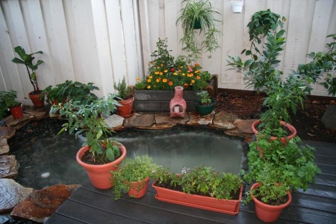 PlanterBoxFinal