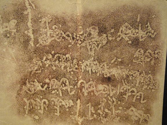 ancient viet script 7