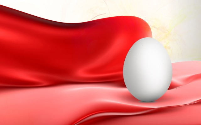 silk egg