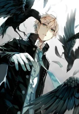 crowfight