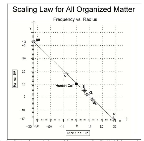 scaling_law
