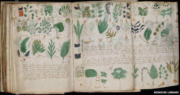 voynich_manuscript_178