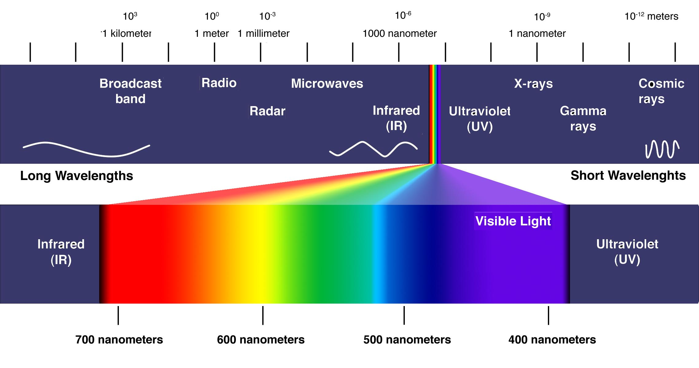 visible-light-spectrum