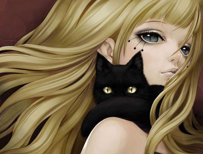 cats6