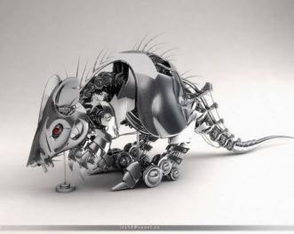 stainless-rat